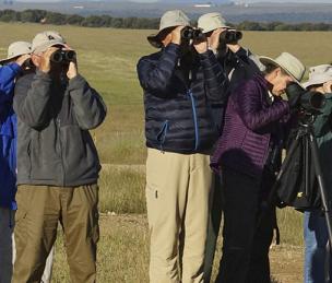 Grupo de ornitólogos